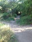 Marylhurst Heights Park
